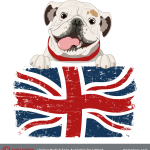 bulldog-spirit-for-catalog