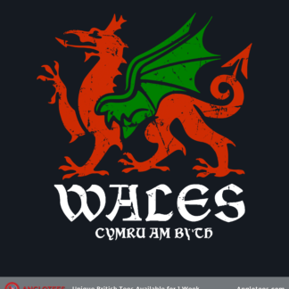 Four Nations: Wales